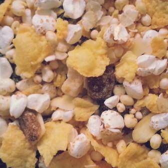 glutenvrije muesli met 6-Zaden, vruchten en amandel